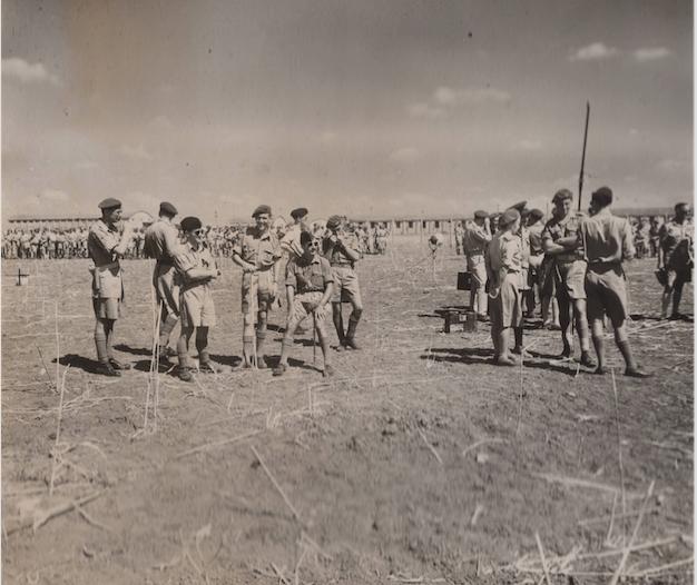 YIBNEH DZ 1946ss